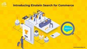 Introducing Einstein Search for Commerce