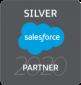 silver-partner-2020